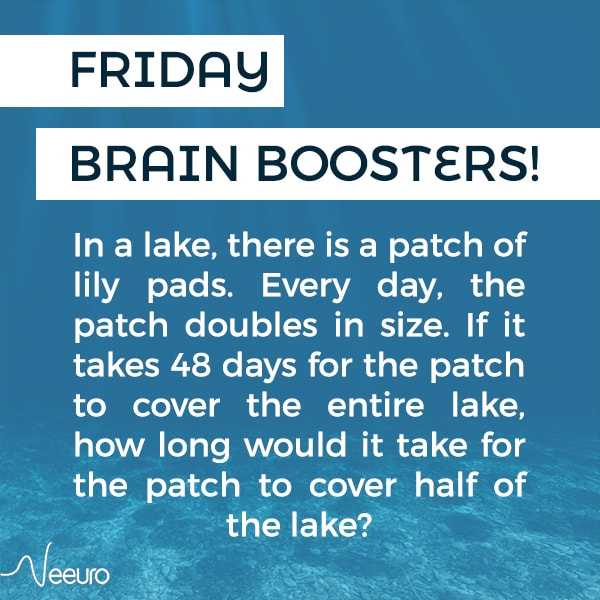 Neeuro Friday Brain Boosters – A Patch of Lily Pads